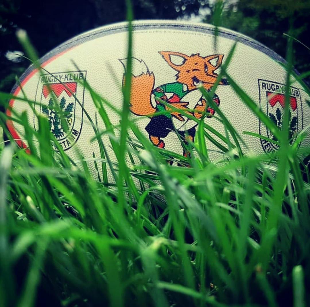 Rugby Ei im Gras